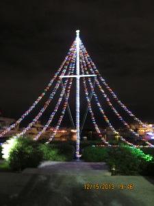 mangosjourney Dec 16 027